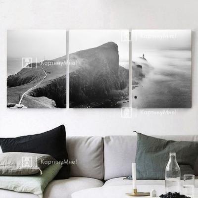 """Картина интерьерная большая черно белая фото """"Склон"""""""