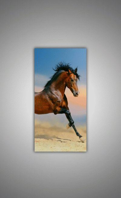 Бег коня-2