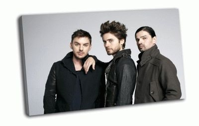 Картина 30 seconds to mars