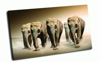 Картина 6 слонов
