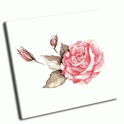 Картина акварель, розы