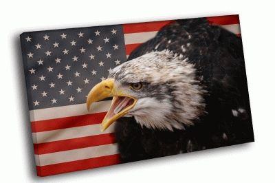 Картина американский флаг и птица