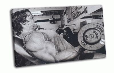 Картина arnold schwarzenegger в качалке