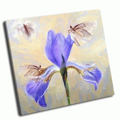 Картина бабочка и ирис