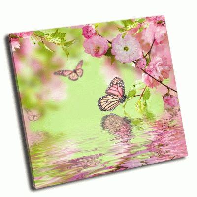 Картина бабочка на цветке сакура