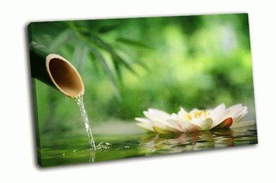 Картина бамбуковый фонтан с лотосом