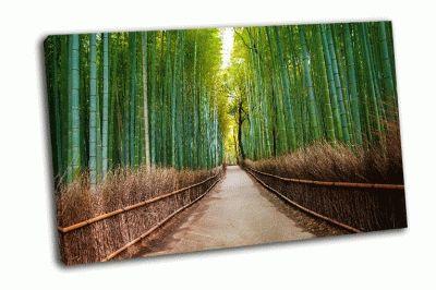 Картина бамбуковый лес в японии