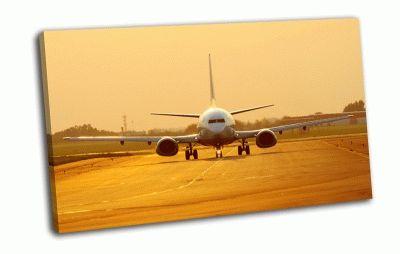 Картина боинг  737