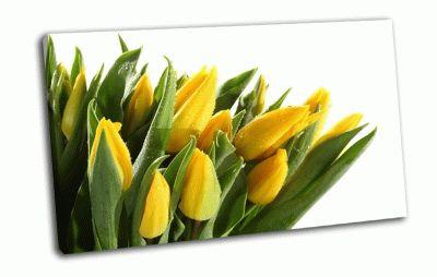 Картина букет желтых тюльпан