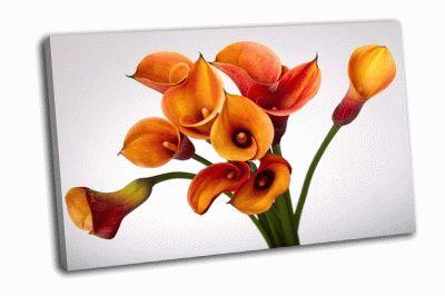 Картина букет из оранжевых каллы