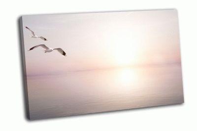 Картина чайки в небе