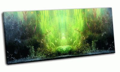 Картина часть аквариума
