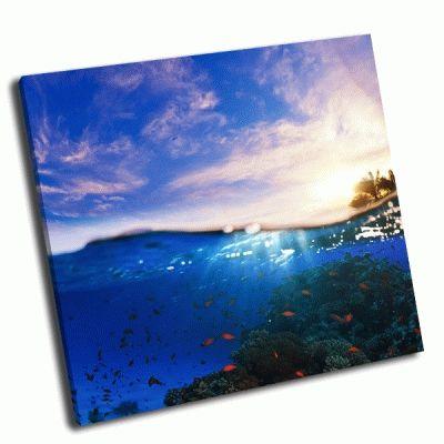 Картина часть кораллового рифа и тропического заката