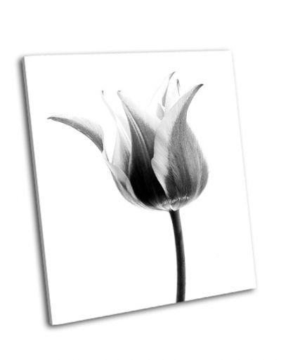 Картина черно-белый тюльпан