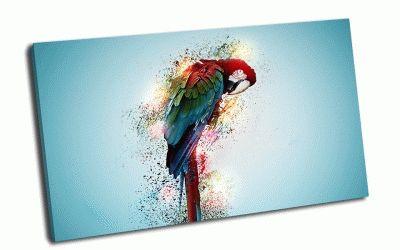 Картина цветной попугай
