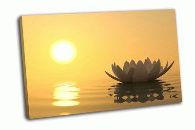 Картина цветок лотоса в воде на закате