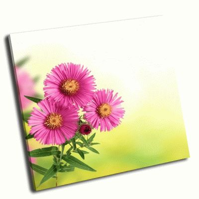 Картина цветы на размытом зеленом фоне