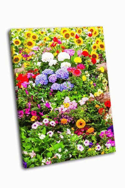 Картина цветы разного вида
