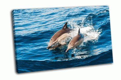 Картина дельфины выпрыгивают из воды