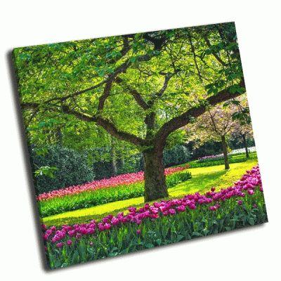 Картина дерево и цветы тюльпаны