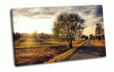 Картина дерево и дорога