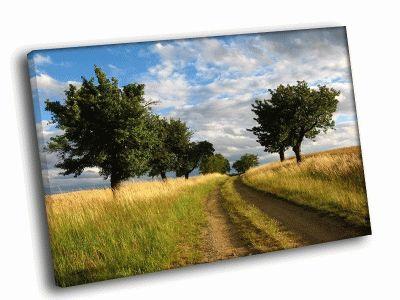 Картина дорога в поле