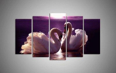 Картина два белых лебедя