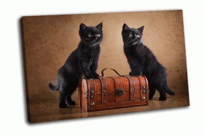 Картина два британских черных котенка