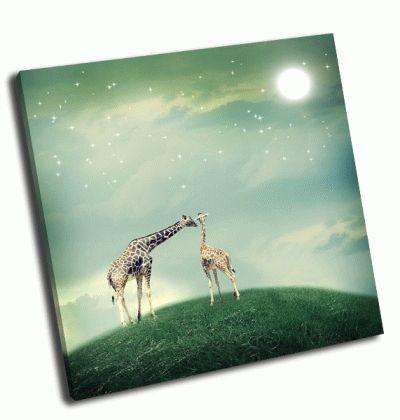 Картина два жирафа мама и ребенок