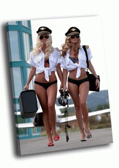 Картина два милых пилота