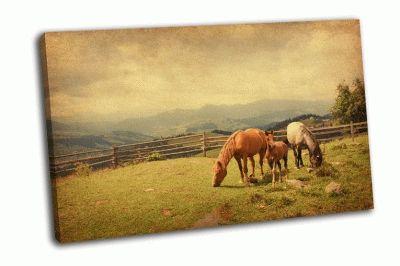 Картина две лошади и жеребенок на лугу