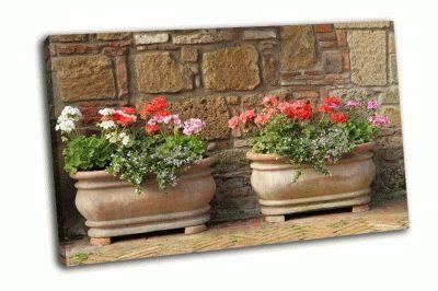 Картина элегантные вазоны с цветами