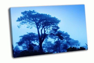Картина фантазия деревьев в туманное утро