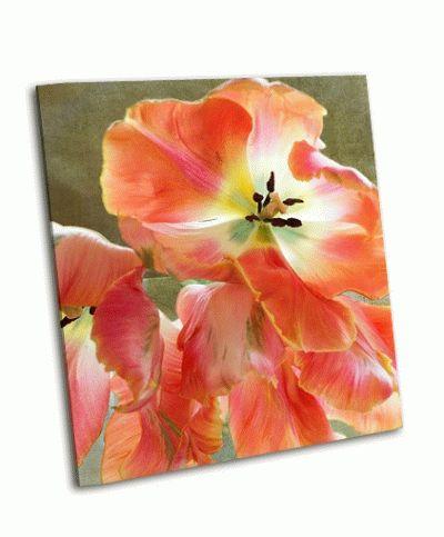 Картина французский тюльпан
