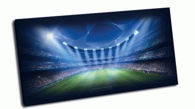 Картина футбол uefa