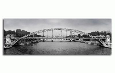 Картина железный мост в центре парижа