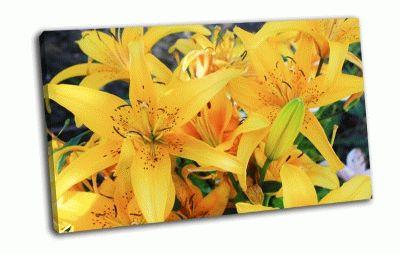 Картина желтые лилии