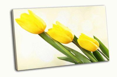Картина желтые тюльпаны на светлом фоне