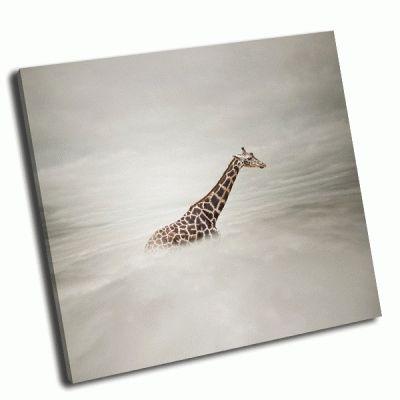 Картина жираф в небе