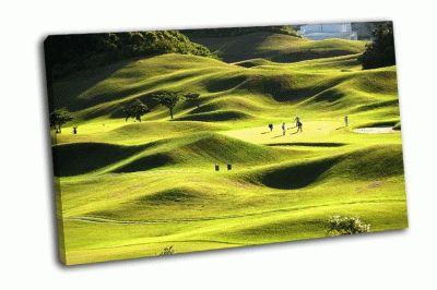 Картина гольф на поле