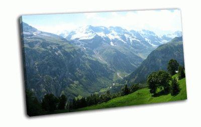 Картина горы , луга