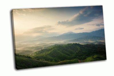Картина горы под туманом утром