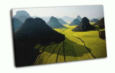 Картина green field