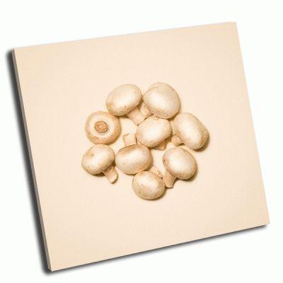 Картина грибы шампиньоны