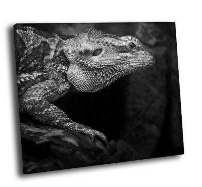 Картина игуана