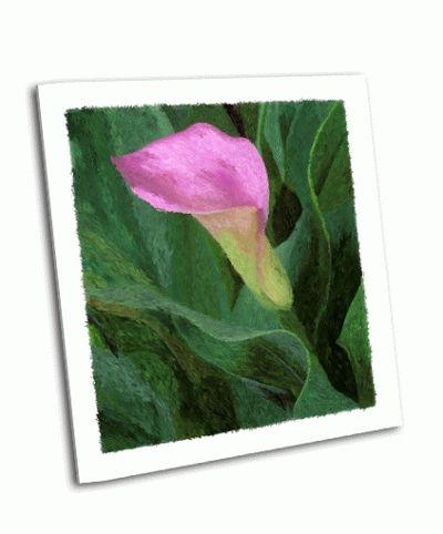 Картина калла лили