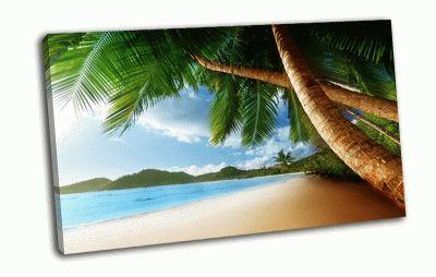 Картина карибский бассейн