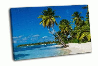 Картина карибский пляж с пальмами