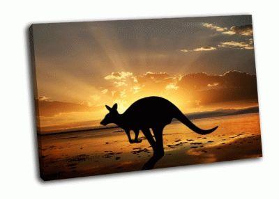 Картина кенгуру на закате