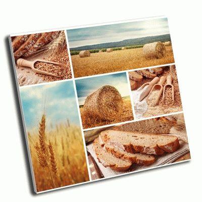 Картина хлеб и уборке пшеницы коллаж